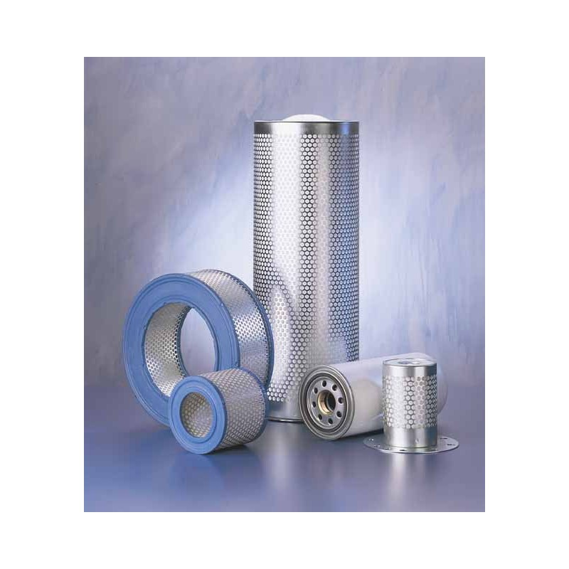 RIETSCHLE 731630 : filtre air comprimé adaptable