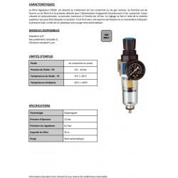 """1/4\"""" 1760 - Filtre régulateur 40 µm FR500"""